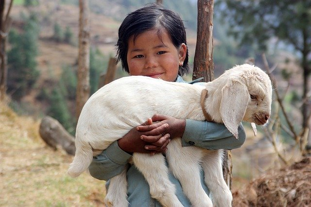 Facts about Nepal girl goad