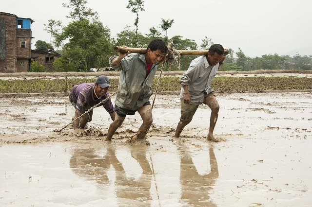 human efforts why nepal is not developed country